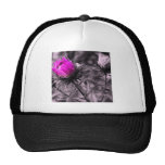 colour flower with black and white mesh hats
