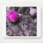 colour flower with black and white mousepads