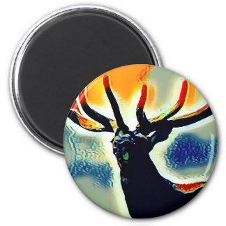 Colour Points Magnet
