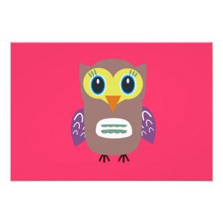 Coloured Owl Photo