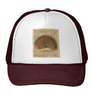 Colourful Beautiful Peacock Vintage Dictionary Art Trucker Hat