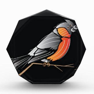 Colourful bird acrylic award