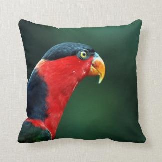Colourful Bird Throw Pillow