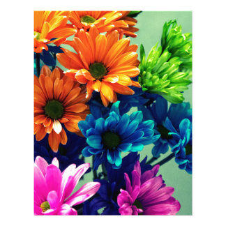 Colourful Bold Daisy Flowers Letterhead