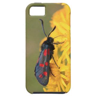 Colourful Burnet Moth photo iPhone SE/5/5s Case