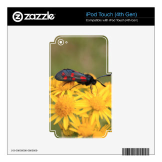 Colourful Burnet Moth photo Skin For iPod Touch 4G