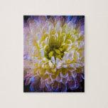 Colourful chrysanthemum jigsaw puzzle