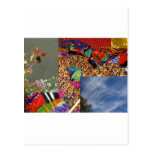 Colourful Daze Post Cards