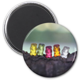 Colourful Diversity Gummy Bears Photography Magnet