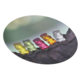 Colourful Diversity Gummy Bears Photography Plate