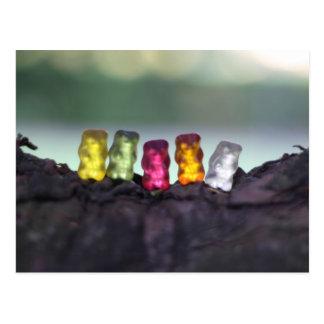 Colourful Diversity Gummy Bears Photography Postcard