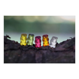 Colourful Diversity Gummy Bears Photography Poster