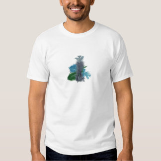 colourful feathers grey shirt