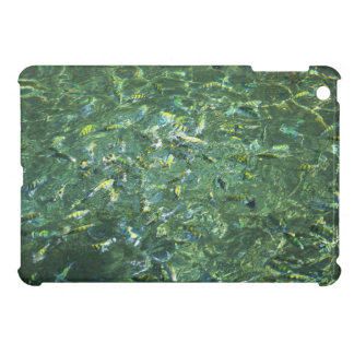 Colourful fish in clear water in Saint Lucia iPad Mini Cases