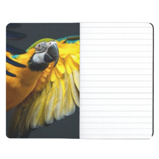 Colourful flying Ara on a dark background Journal
