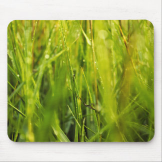 colourful green natural outdoor abstract design mouse pad