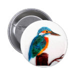 Colourful Kingfisher Art 2 Inch Round Button