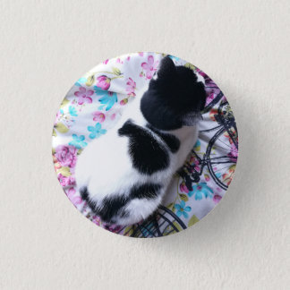 Colourful Kitty Pin