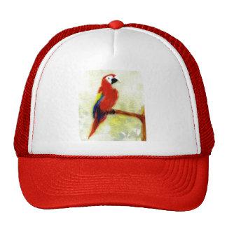 Colourful Macaw Bird Art Cap