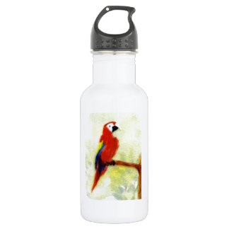 Colourful Macaw Bird Water Bottle