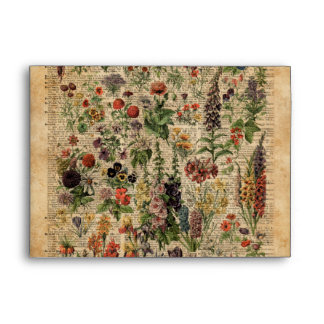 Colourful Meadow Flowers Herbs Dictionary Art Envelope
