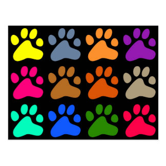 Colourful Paws Post Card