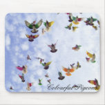 Colourful Pigeons Mouse Mat