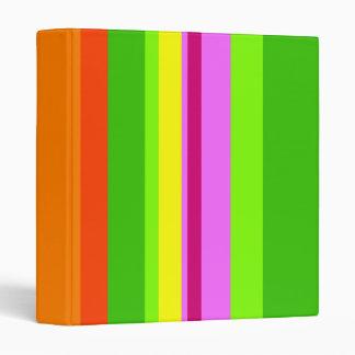 Colourful Stripes Vinyl Binder