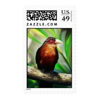 colourful tropical bird stamp