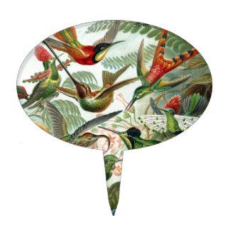 Colourful vintage art humming birds paradise found cake pick