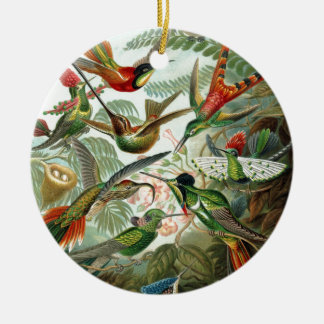 Colourful vintage art humming birds paradise found ornaments