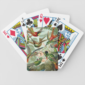 Colourful vintage art humming birds paradise found bicycle poker cards