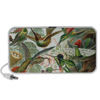 Colourful vintage art humming birds paradise found speaker