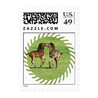 Colt and Foal Playing Postage Stamp