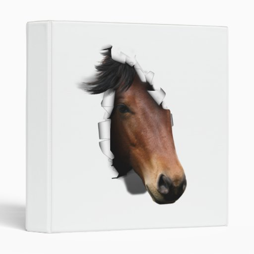 Colt Coming Out To Say Hello Vinyl Binders