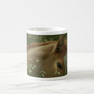 Colt Horse Mug