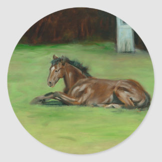 Colt painting quarter horse on items classic round sticker