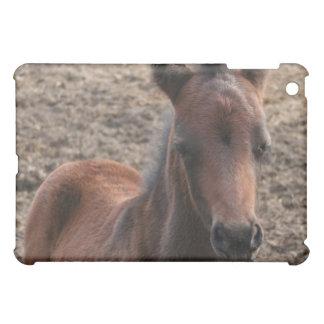 Colt Photo iPad Case