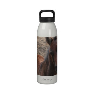 Colt Photo Water Bottle