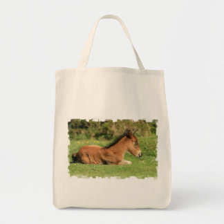 Colt Resting in Grass Grocery Tote Tote Bags
