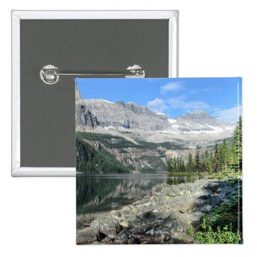 Columbia Británica Canadá del parque nacional del  Pins
