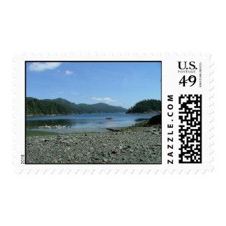 Columbia Británica de la playa de la isla de Vanco Sellos