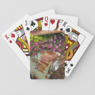 Columbia Falls Deck Of Cards