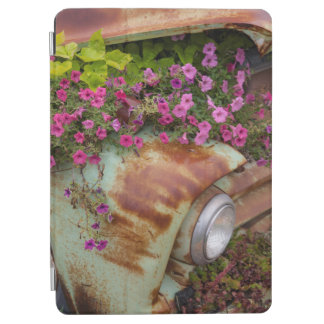 Columbia Falls iPad Air Cover