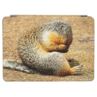 Columbia Ground Squirrel iPad Air Cover
