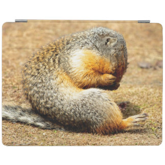 Columbia Ground Squirrel iPad Smart Cover
