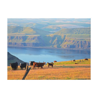 Columbia River Gorge Stretched Canvas Print