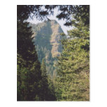 Columbia River Gorge Postcard