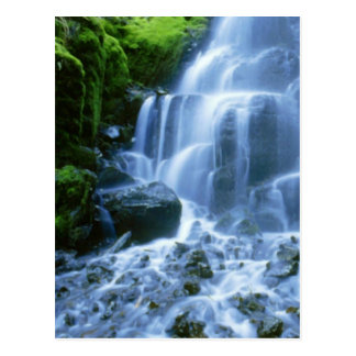 Columbia River Waterfall Fine Photo Postcard