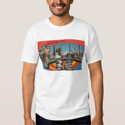 Columbia, South Carolina - Large Letter Scenes 2 T-Shirt